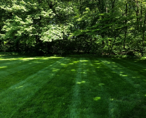 Landscaping Services in North Attleboro, MA - BCM Landscape